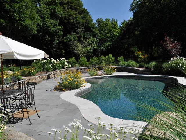 inground pool with patio, plants, table, umbrella, and chairs